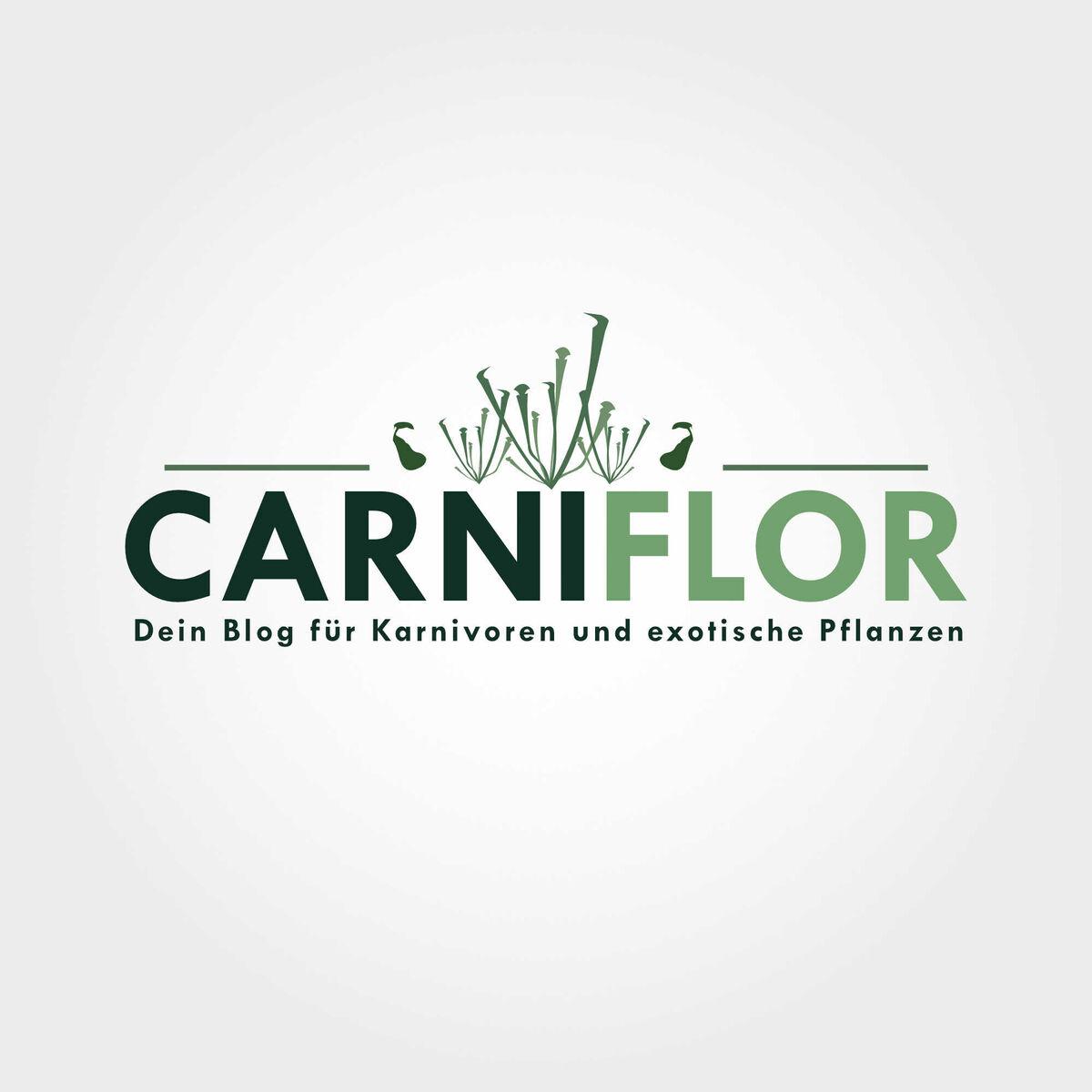 carniflor_logo_1-0.thumb.jpg.a16d3814b575a97ce76ee99451f7c8cc.jpg